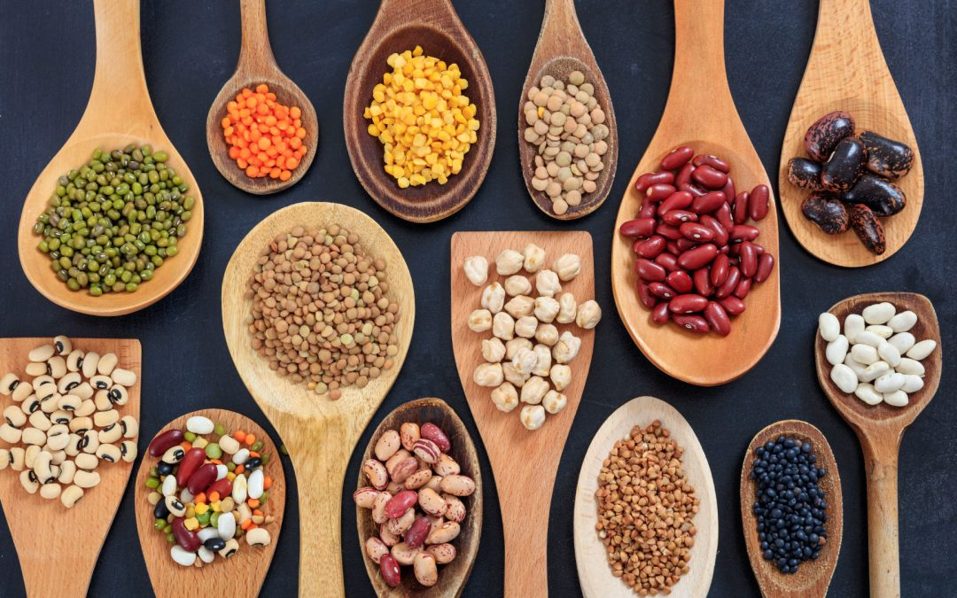 ¿Qué son las legumbres?