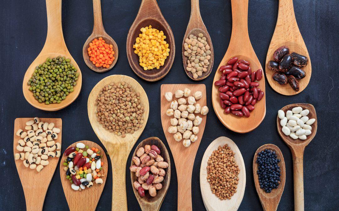 Top 10 mercados exportadores de legumbres